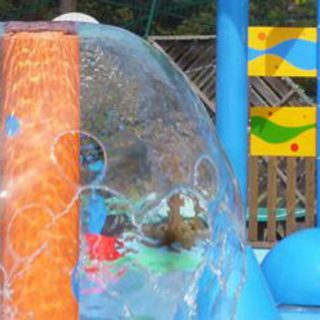 Laguna, Spray Park, giochi d'acqua, giochi spruzzanti, bolla d'acqua, elefante spruzzante, bersagli mobili